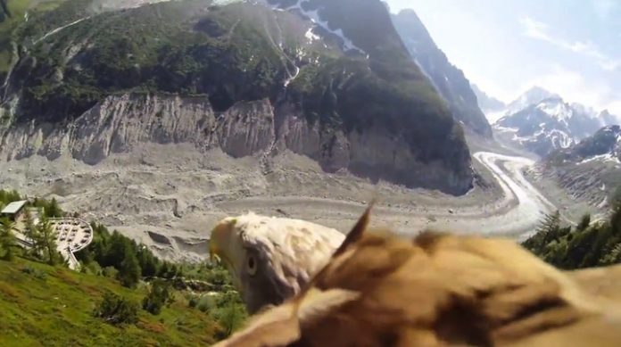 It features a bird's eye view of the world as an Soaring Eagle across the Mer de Glace, a glacier located in the Chamonix Valley in France.