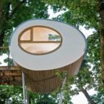 Amazing tubular glass house built around tree charismatic planet - The tubular glass house ...