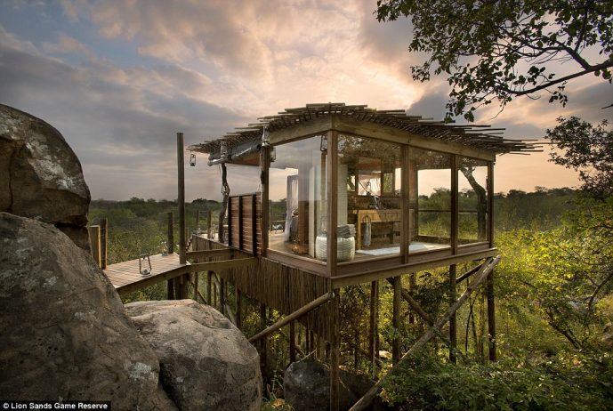 The Kingston Tree House At Lion Sands Game Reserve In South Africa Features A  Bathroom With A View Of The Surrounding Wildlife