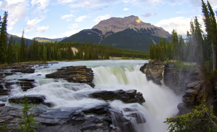 National Birds Of America >> Athabasca Falls, Jasper National Park in Alberta Canada