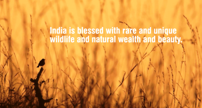 natural wealth of india India - hindi indonesia - bahasa  oaxaca is home to a great biodiversity and natural wealth, and its forest do provide economic opportunities for rural communities  this approach helps empower rural communities and increases the value of forests by incorporating sustainable natural resources management practices that promote job.