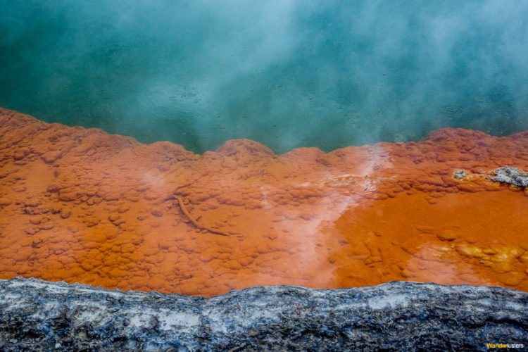 The Taupo Volcanic Zone has dramatic geothermal conditions beneath the earth; the area has several hot springs noteworthy for their colorful appearance.