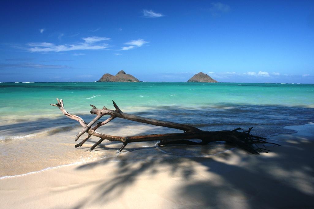 Lanikai Beach Snorkeling Archives Charismatic Planet