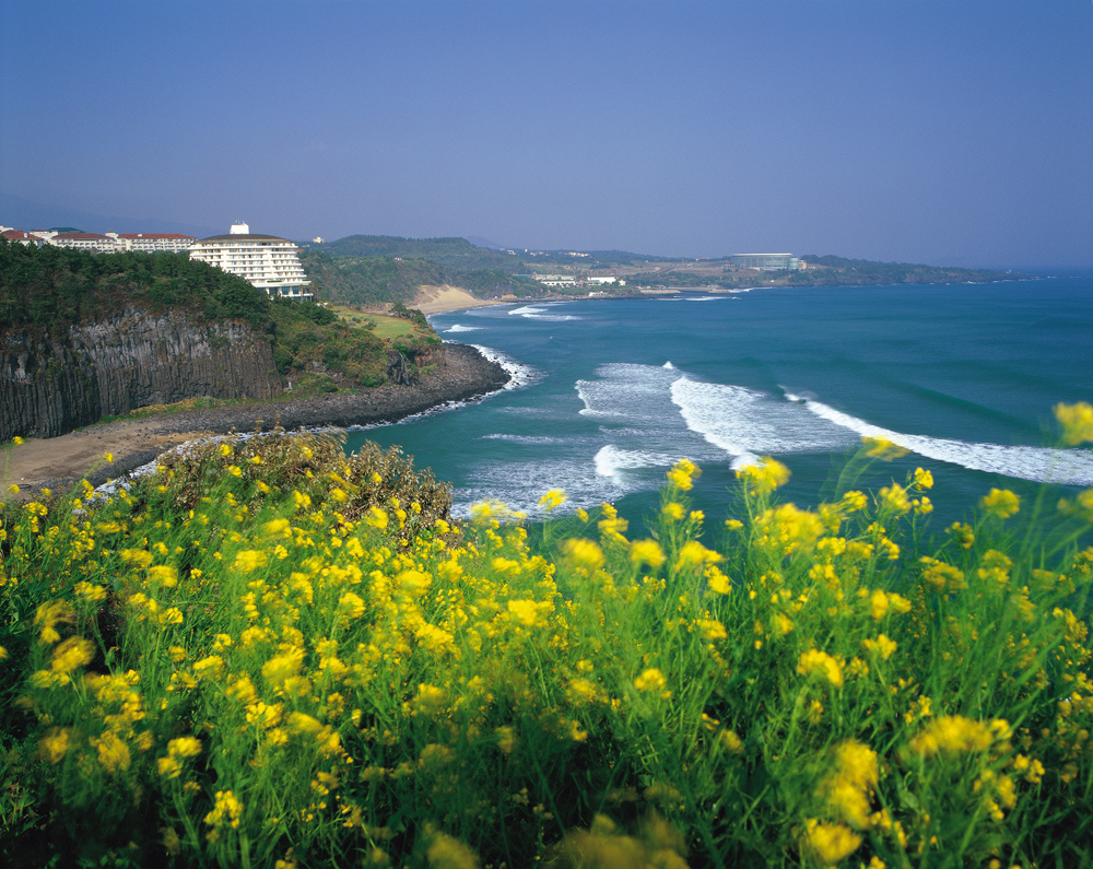 It is the largest island 130 km off the coast and the main island of Jeju Province of South Korea.