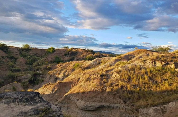 Among all the landscapes in Colombia, Tatacoa Desert is most impressive, due to its greatness, its natural rarity and its peculiarity.
