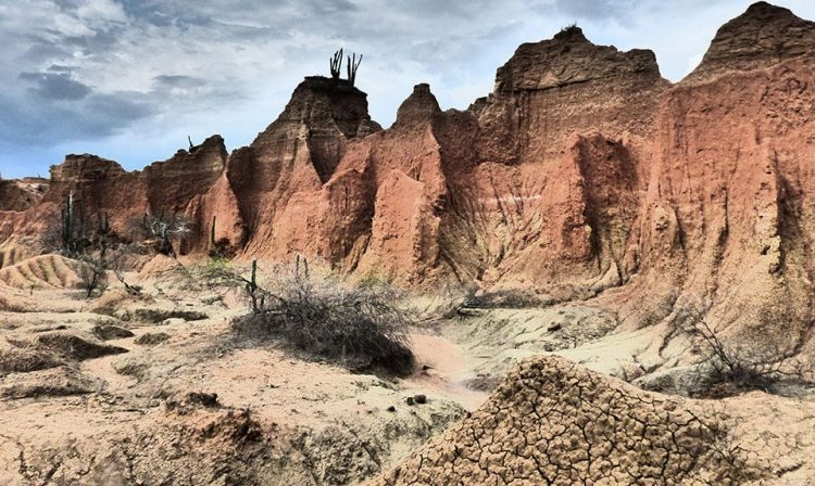 The Tatacoa is heavily eroded and crossed by dry canyons that develop transiently in the winter months or during the rainy seasons.