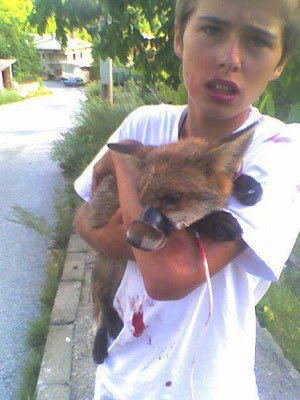 Small Boy Save the Red Fox