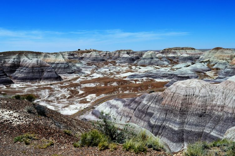 The Petrified Forest and Painted Desert is a living history book. The majestic colors, hues, and shades, paint a tapestry of time. Visualize that once this was a tropical forest! Dinosaurs walked here.