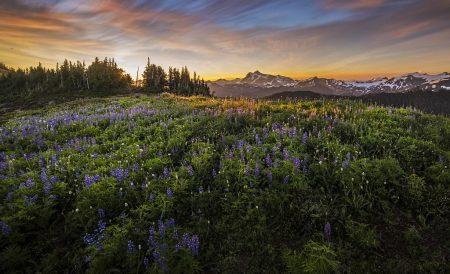 Sun Rises at Mount Shuksan