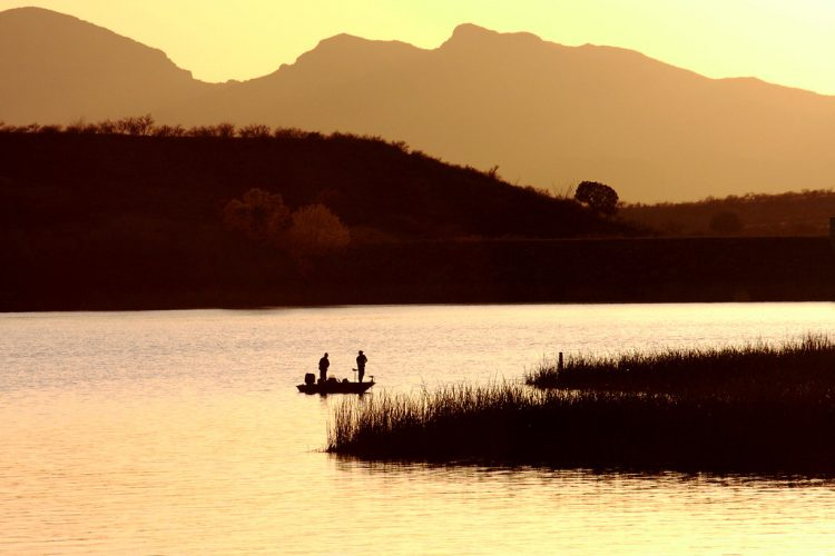 The Lake is popular spot for fishing, camping, picnicking (table and grills), hiking, beach relaxing, bird watching, water skiing, and boating, created by damming Sonoita Creek.