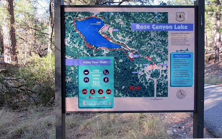 The six-acre lake is tucked away in a scenic stand of mature ponderosa pines forest high on the slope of Santa Catalina Mountains near Mt Lemmon.