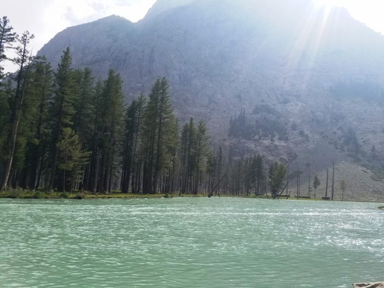 Mahodand lake banks are beautifully covered by high rise pines and pastures that serve as a camping site during the summer.