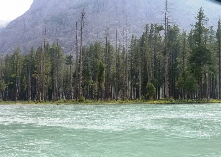 """The Lake is fed by melting glaciers and springs of the Hindu Kush mountain and gives rise to Ushu forest the major left tributary of the Swat River. Mahodand Lake is famous as """"Lake of Fishes""""."""