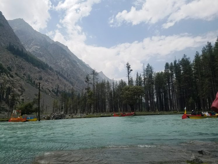 Mahodand Lake basin is surrounded by a sheet of alpine flowers like geum, blue poppy, potentilla and gentian.