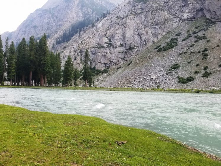The visitors feast their eyes with lush green sceneries, meadows, clumps of alpine and cedar trees and snow capped mountains. (Photo Credit: Tauheed Ahmad Nawaz)