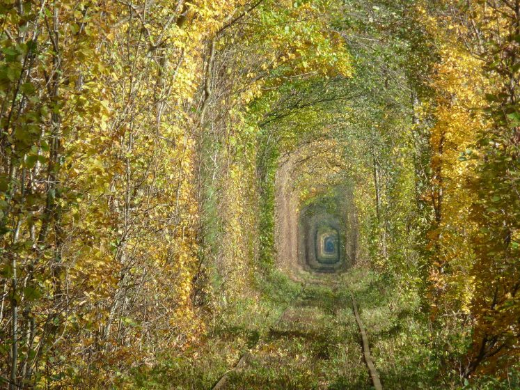 However, tunnel of love stretches anywhere from 3 to 4.9 km, depending on how individuals count it. The gloomy atmosphere offers a degree of privacy and scariness. It is an ideal spot for selfies, wedding photos, for FB and Instagram depends on your perspective.