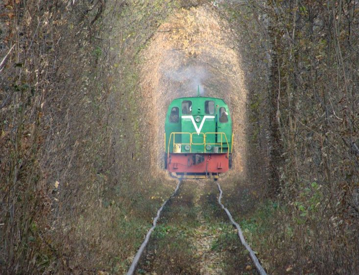 From many years, tunnel of love Ukraine, is so famous on internet. The soft-hearted loving people captivate the beauty of tunnel in a few moments.