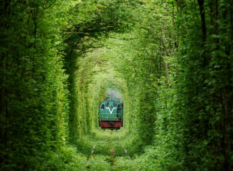 The line is being at Klevan station and reaches the northern area of Orzhiv. The 4.9 km line is fully covered with dense forest out of whole line of 6.4km.