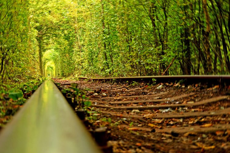 The green corridor is an industrial track for wooden work, fiberboard factory employed three times a day, but depending on how much plywood is to transport.