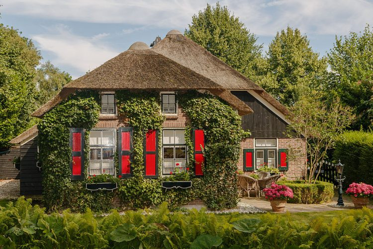 Giethoorn became locally famous, particularly when the Dutch film maker Bert Haanstra made his famous comedy Fanfare there in 1958.