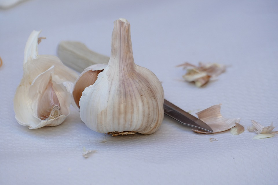 Garlic is supported both an ancient history and a wealth of modern research. Scientific cover its chemistry, pharmacology, and clinical uses.