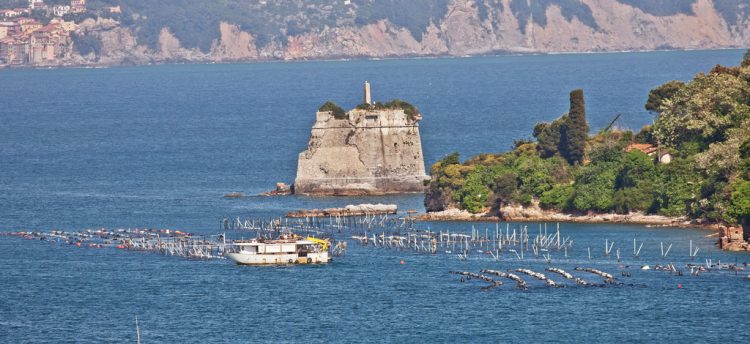 Scola Tower Italy (3)