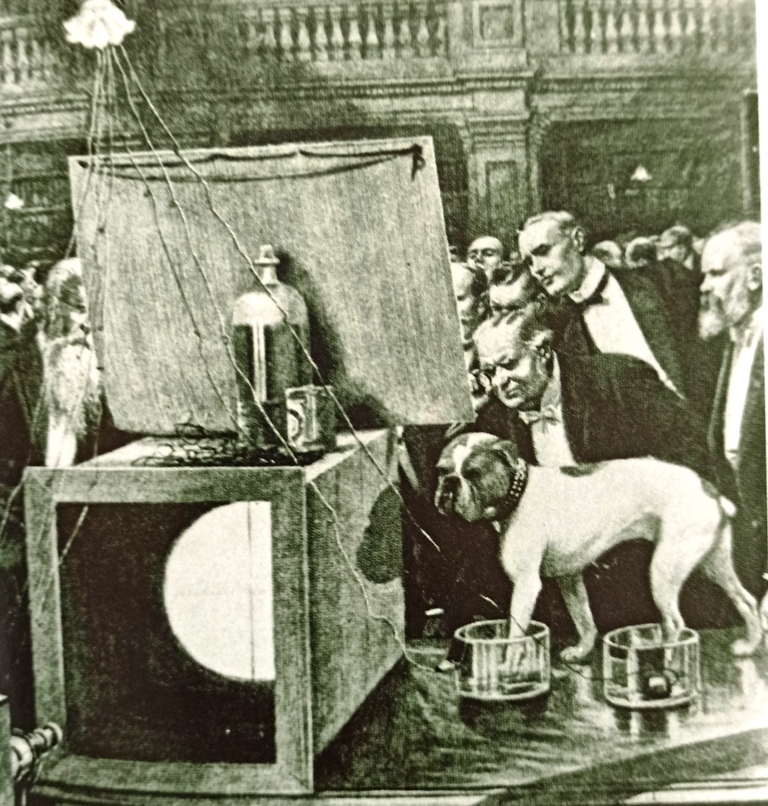 Augustus Waller was demonstrating his capillary electrometer to the Royal Society in London in 1887.